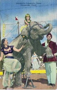gainesville_circus_3-2