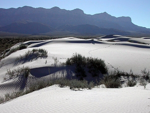 Dunes in the Salt Flat