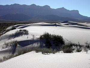 Dunes in the Salt Flat