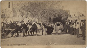 Mexican Carreta in El Paso, c. 1885  Photo courtesy SMU